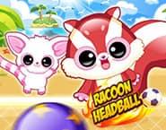 Racoon Headball