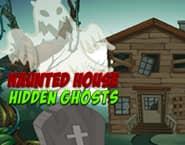 Haunted House: Hidden Ghosts